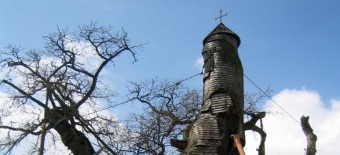 chapel-oak