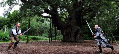 major-oak