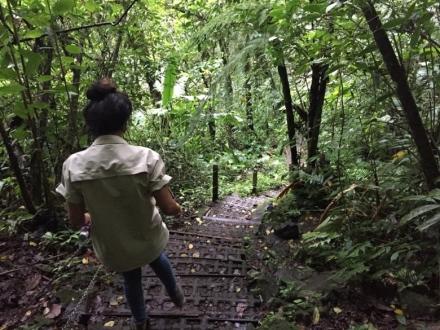 CR Hike